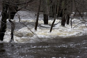 Pawtuxet River 11 ft above flood stage 3/31/10